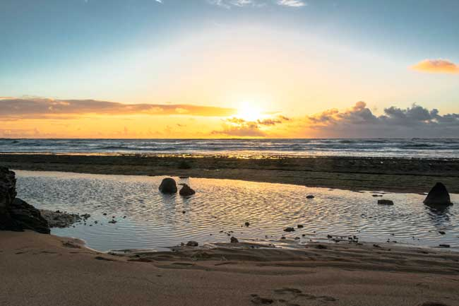 Magnificent beaches and natural parks awaits you in Kauai island.